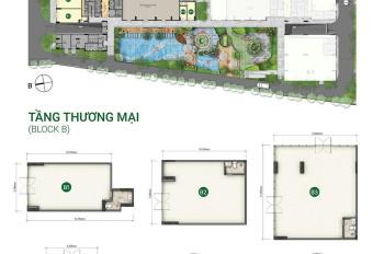 Cho thuê gấp Shophouse Botanica Premier cạnh sân bay Tân Sơn Nhất, giá tốt nhất - LH 0901 42 8898