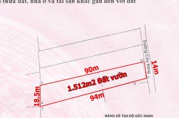 Trí BĐS, Đất vườn 14x90m=1.512m2, mặt tiền đường Cây Bàng xã Tân Kiên, gần ngã 3 An Lạc, đường lớn