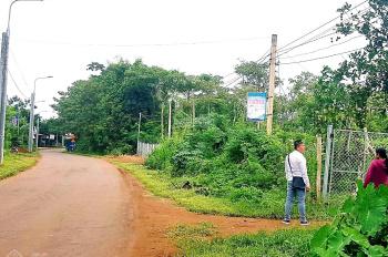 Bán 2 lô đất liền kề nhau, đất mặt tiền đường nhựa Xuân Định - Lâm Sang, xã Bảo Bình