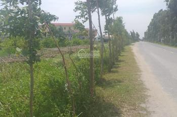 Bán đất công nghiệp Hải Dương giá rẻ, quy mô 1.3ha, bàn giao hạ tầng, nhà xưởng theo yêu cầu