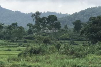 Cần bán lô đất 6608m2 Yên Bài, Ba Vì, HN, view đẹp thoáng mát, giá yêu thương