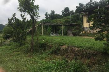 Bán 2.2 ha trang trại đất trồng cây lâu năm tại Lương Sơn, Hòa Bình