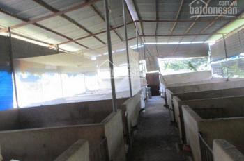 Cho thuê nhà, trại nuôi gần KDL Thác Giang Điền, Trảng Bom, Đồng Nai, LH 0919809230