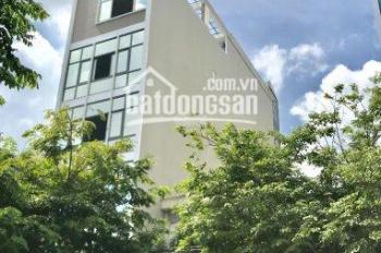 Cho thuê văn phòng quận Bình Thạnh, Phúc Quý Building đường D1, 80m2 giá 25 tr/th. LH 0975 022 587