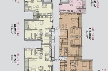 Vô cùng sốc! Cắt lỗ 400tr căn CH02 tòa M1, view bể bơi, dự án Vinhomes Liễu Giai, Lh 0962455188
