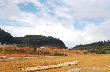 Bán lô đất nền vị trí ngay trục đường 79 dự án KĐT Vạn Xuân - Langbiang Town. Có sổ đỏ chính chủ