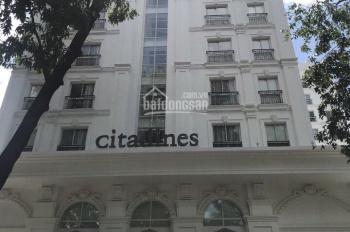 Cho thuê khách sạn 2 sao Phạm Ngũ Lão Q1, hầm 12 lầu 32 phòng thang máy