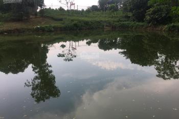 Cần bán luôn 2000m2 nhà đất ở tại mặt Hồ Miễu Xã, Liên Sơn, Lương Sơn, Hòa Bình