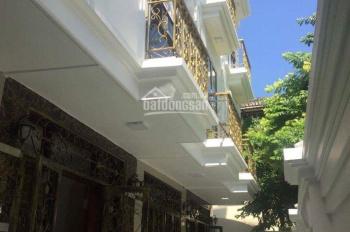 Bán nhà phố ngõ 274 phố Kim Ngưu DT 36,4m2 x 5T mới xây. Ngõ thông thẳng ra phố, SĐCC giá 3,28 tỷ