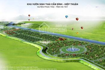 Bán đất nền dự án Cẩm Đình - Hiệp Thuận - 1654m2 - lô G180 - giá: 3tr3/m2 - SĐT: 0836487455