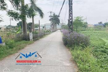 Bán lô đất 99.6m2 đất Đại Bản, Phú Thị, Gia Lâm, đường trước mặt 6m, hướng Tây Mệnh
