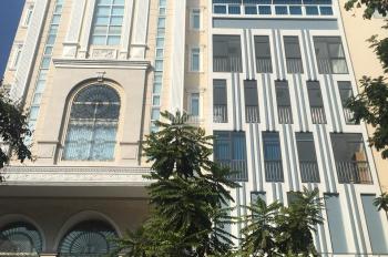 Bán siêu phẩm CHDV sang trọng đường Bà Lê Chân, P. Tân Định, Q.1, DT: 8x21,5m, giá bán 38 tỷ