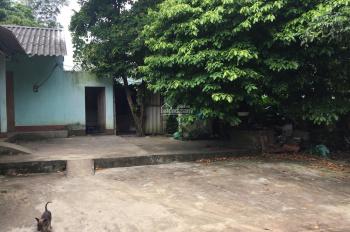 Chính chủ cần chuyển nhượng gấp 2616m2 thổ cư 400m2 đất ở tại Yên Bài, Ba Vì, Hà Nội