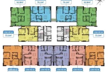 Anh thanh bán nhanh căn hộ 1008 DT 76m2 CC C46 Định Công, giá 25 tr/m2. LH 0964964059