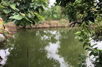 Nhượng QSD 3600m2 đất trang trại nghỉ dưỡng xã Yên Bài, Ba Vì, giá 280 triệu/sào