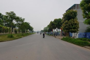 Chính chủ bán LK Tây Nam Linh Đàm, DT 80m2 - 90m2 - 100m2, MT 5m. Đường 23.5m, giá 52tr/m2