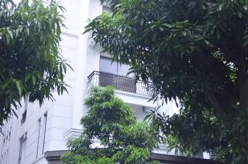 Tôi cần cho thuê biệt thự làm văn phòng tại phố Victoria, gần KĐT The K Park, Văn Phú, giá 5tr/tầng