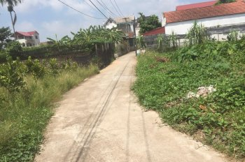 Bán nhanh 201m2 đất gần đường 379 ở ấp Kim Ngưu Tân Tiến, Văn Giang, Hưng Yên, giá cực rẻ!