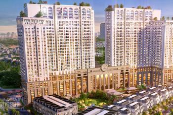Cho thuê mặt bằng kinh doanh tầng 1 tại dự án Roman Plaza, MT 12m, DT 275m2