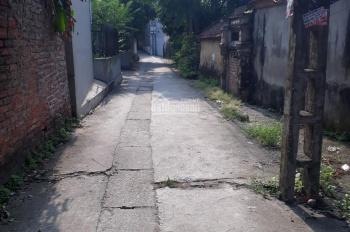 Bán đất địa chỉ xóm Vang Cổ Loa, huyện Đông Anh, TP Hà Nội. Diện tích: 91m2, rộng: 5m