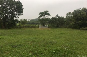Bán đất thổ cư DT 2160m2 tại Yên Bài, Ba Vì, Hà Nội