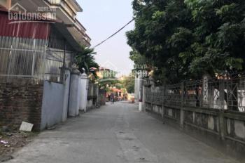 Bán đất đấu giá Kim Sơn, đường 7m, giá yêu thương LH 0844444404