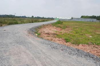 Đất nền có thể phân lô, nền cao không ngập, đường xe tải vô thoải mái