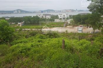 Chính chủ gửi bán lô đất biệt thự Tuần Châu, hướng biển, giá cho nhà đầu tư