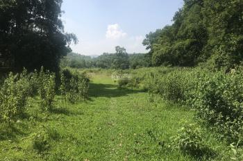 Cần bán mảnh đất 12306m2 full thổ cư 100% tại xã Cư Yên, huyện Lương Sơn, tỉnh Hòa Bình