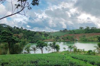 Đất nền Bảo Lộc diện tích 500m2 mà giá 450 triệu, khu dân cư hiện hữu, gần địa điểm du lịch Dambri