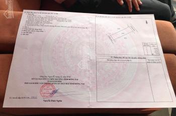 Chính chủ bán lô 2 mặt tiền dự án Long Hưng, TP Biên Hòa