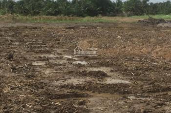 Đất nông nghiệp xã Phước Khánh, chỉ 700 triệu, 1000m2, xe máy tới đất