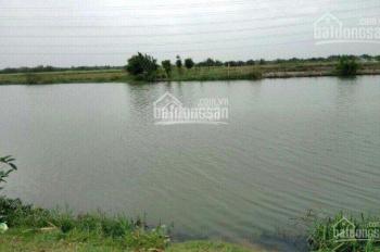 Bán đất nông nghiệp xã Phú Đông, giá chỉ từ 800 triệu tới 950 triệu/1000m2