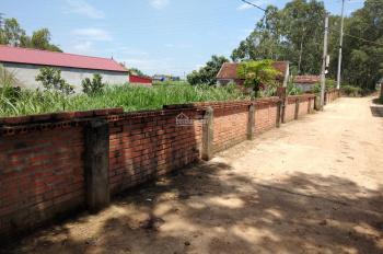Bán ngay đất Bãi Dài, xã Tiến Xuân, huyện Thạch Thất cách khu đô thị mới Xanh Villas 300m
