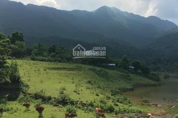 Chính chủ cần bán đất nghỉ dưỡng tuyệt đẹp tại Yên Bài, Ba Vì giá rẻ