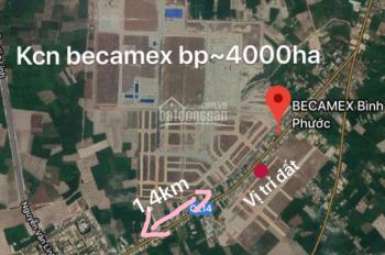 Bán gấp đất  2 lô tái định cư do nhà nước đền bù