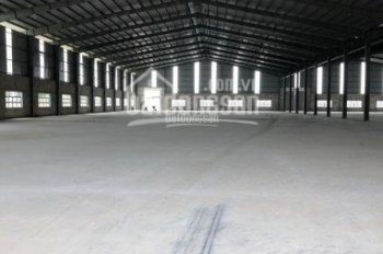 Cho thuê kho 1032m2, Lò Lu, Quận 9, TP.HCM