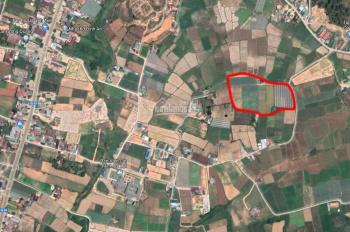 Chính chủ bán đất Đức Trọng siêu đẹp, diện tích 16.366m2 - LH: 0948305070