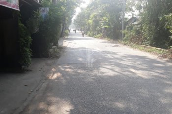 Bán đất tặng nhà 3 tầng đường Đào Cam Mộc, thị trấn Đông Anh, huyện Đông Anh, Hà Nội