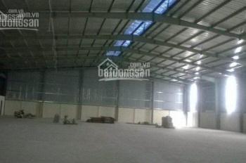 Cho thuê kho chung trong KCN Tân Bình. LH: 090.396.1884