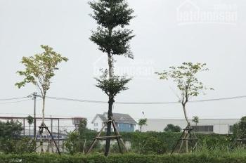 Cần bán 370m2 mặt đường 6A, thị trấn Chúc Sơn, huyện Chương Mỹ, Hà Nội
