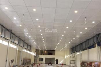 Chính chủ cho thuê showroom kinh doanh, khép kín mới xây, DT 1500m2. LH: 0399999989