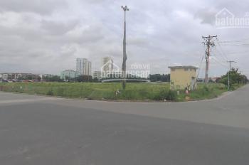Bán đất Q. 12 giá rẻ bất ngờ, gần chợ, UBND, công viên, trường học P. Tân Hưng Thuận