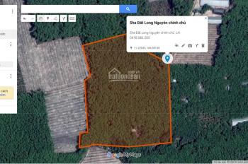 Chính chủ cần bán 5ha đất tại Long Nguyên - Bàu Bàng - cách chợ Long Nguyên 3km giá cực rẻ