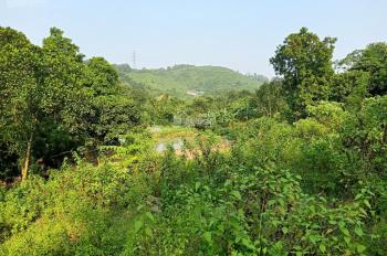 Chính chủ cần tiền muốn thanh lý 2.808m2 đất có suối chảy qua tại Hòa Sơn, Lương Sơn, Hòa Bình