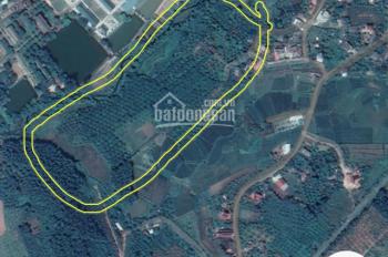 Bán 4ha đất sổ đỏ cách trường trung học phổ thông 1km, giá 18 tỷ