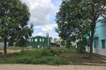 Kinh doanh cở sở vật liệu xây dựng ở sài gòn thiếu vốn nên bán lại 2 lô đất ở bình dương, đã có SHR