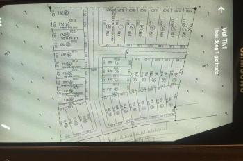 Chính chủ bán gấp 02 lô đất đấu giá thôn Trần Đăng - Xã Hoa Sơn - Ứng Hòa - Hà Nội