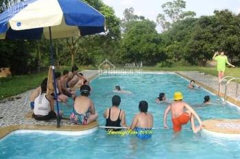 Nhượng 7000m2 nhà vườn hoàn thiện có bể bơi tại Lương Sơn, Hòa Bình giá rẻ