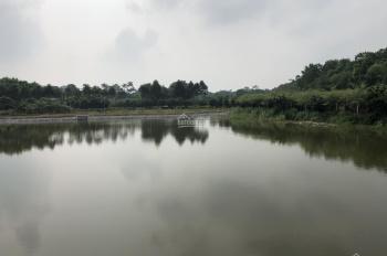 Nhượng 2ha trang trại nhà vườn có ao to cạnh sân golf Skylake Lương Sơn, giá 500 nghìn/m2